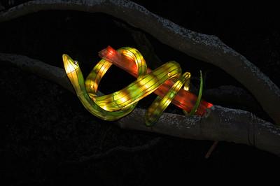 Snake Lantern Festival Albert Park Auckland New Zealand - 2 Mar 2007