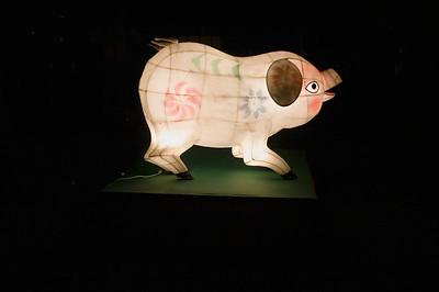 Golden pig Lantern Festival Albert Park Auckland New Zealand - 2 Mar 2007