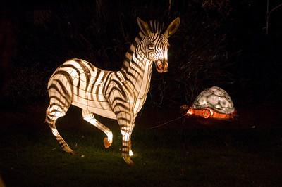 Zebra and turtle Lantern Festival Albert Park Auckland New Zealand - 2 Mar 2007