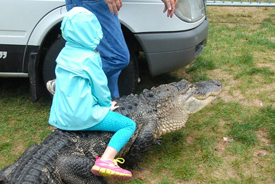 Last Fling - 2012 - Naperville, Illinois - Cold Blooded Creatures