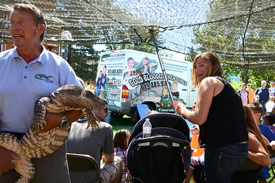 Last Fling 2016 - Naperville, Illinois - Family Fun Land - Cold Blooded Creatures