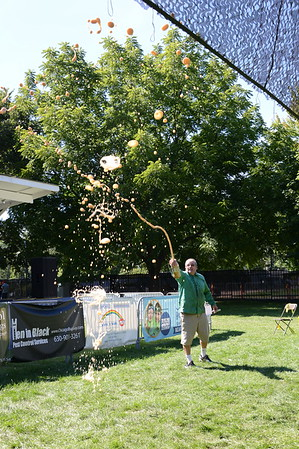 Last Fling 2016 - Naperville, Illinois - Family Fun Land - Excited About Science