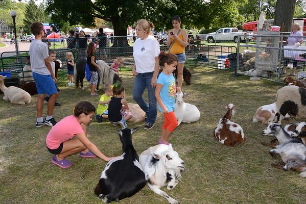 LF2016 FFL - Petting Zoo
