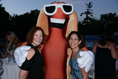 Last Fling 2016 - Naperville, Illinois - People enjoying The Last Fling!
