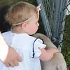 Last Fling 2017 - Naperville, Illinois - Family Fun Land - Petting Zoo