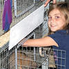 Gary Church/NEWS<br /> Alexis Brua, a Laurel school student, feeds her rabbit Dash at the Lawrence County Fair yesterday.