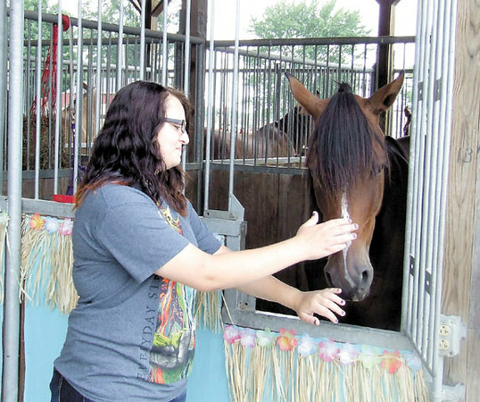 Gary Church/NEWS<br /> Shayna Houston, 16 a student in the Laurel school district, pets a horse yesterday at the Lawrence County Fair.