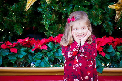 Leach Christmas Photo Shoot