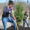 "Statewide Volunteer Day looks like ""Arbor Day"" at several sites."