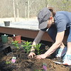 In all, volunteers plant 147 flowers, herbs, and shrubs, beautifying 4 sanctuaries and helping to attract pollinators.