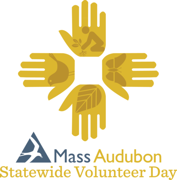 What can 650 committed volunteers accomplish on one Saturday morning?  Take a photo tour of Mass Audubon's 12th Annual Statewide Volunteer Day  and see!
