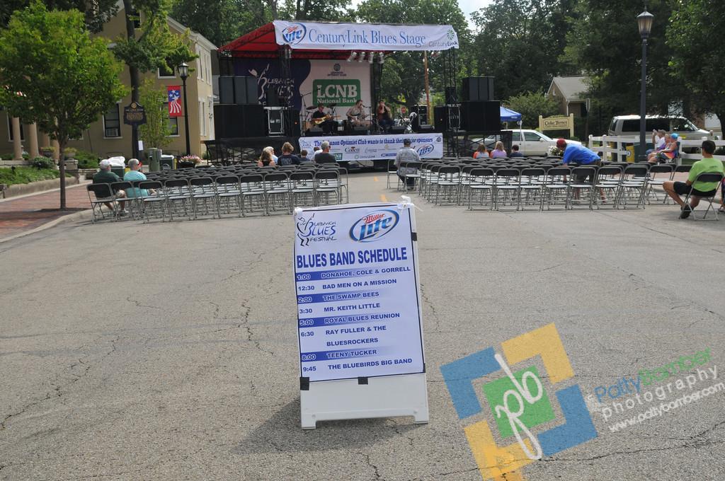 Blues Festival by PBamber 2011 - 004