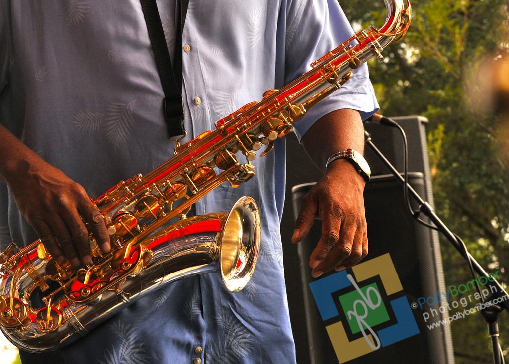 Blues Festival by PBamber 2011 - 202