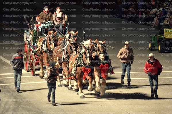 Lebanon Horse Parade Photos