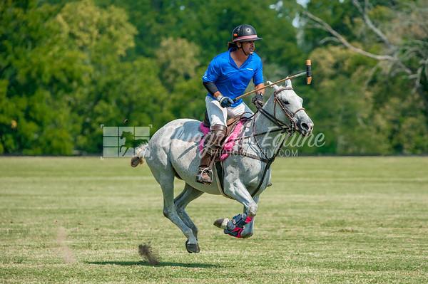 Lexington Polo - August 27 Practice