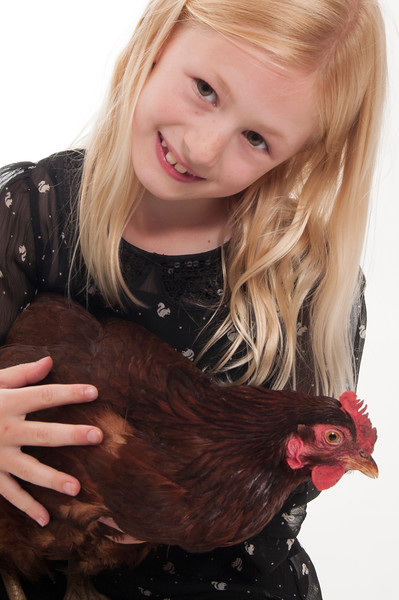 pretty blonde girl holding and cuddling a chicken, isolated on white background