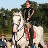 Herrmann's Royal Lipizzan Stallions