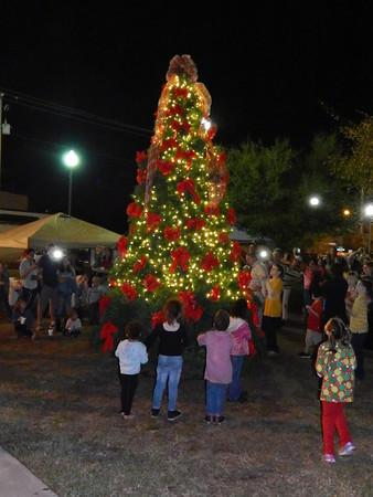 Live Oak Lights Christmas Tree