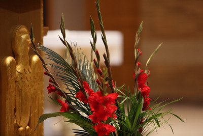 Live Stations 2015 - Palm Sunday