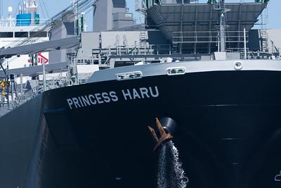 OCT_Pr_Haru-3343