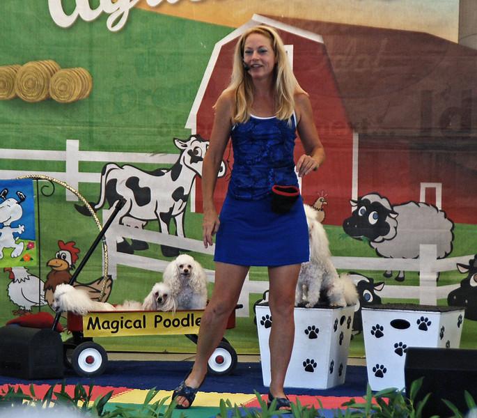 Michelle's Magical Poodles.