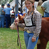4H cattle entry.
