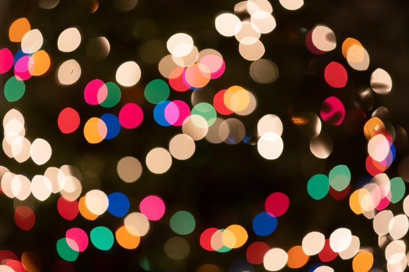 Locavore Christmas 2018-25