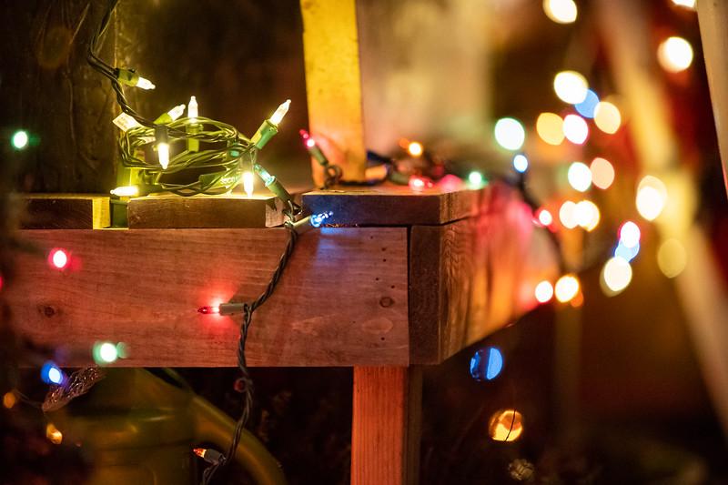 Locavore Christmas 2018-168
