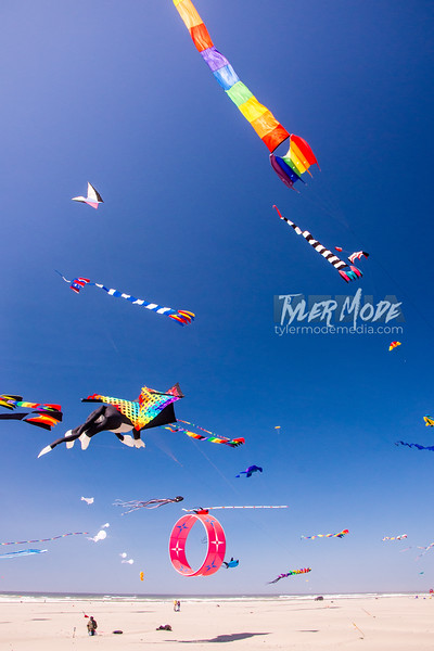 118  G Kite Fest V