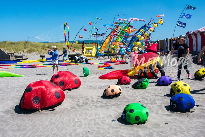 110  G Kite Fest
