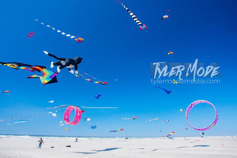112  G Kite Fest