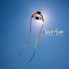 150  G Kite Fest V