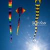 139  G Kite Fest V