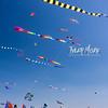 165  G Kite Fest V