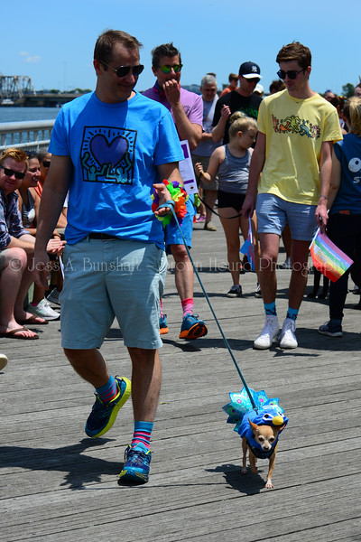 20190622_0110_Pet Pride Parade-a
