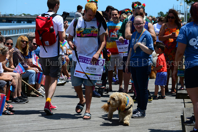 20190622_0038_Pet Pride Parade-a