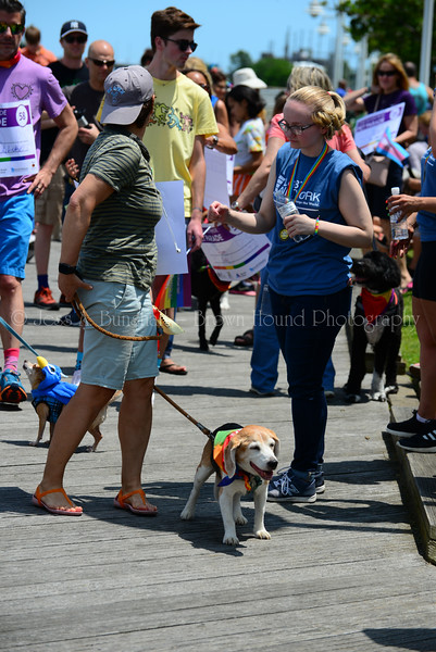 20190622_0105_Pet Pride Parade-a