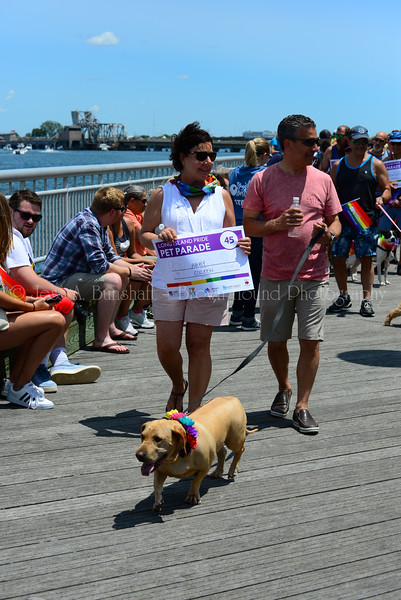 20190622_0088_Pet Pride Parade-a