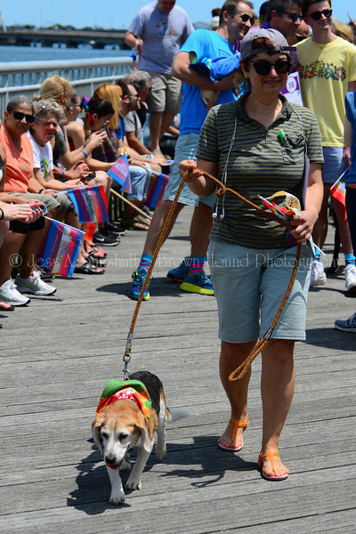 20190622_0108_Pet Pride Parade-a