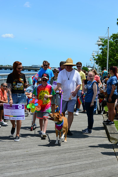 20190622_0103_Pet Pride Parade-a