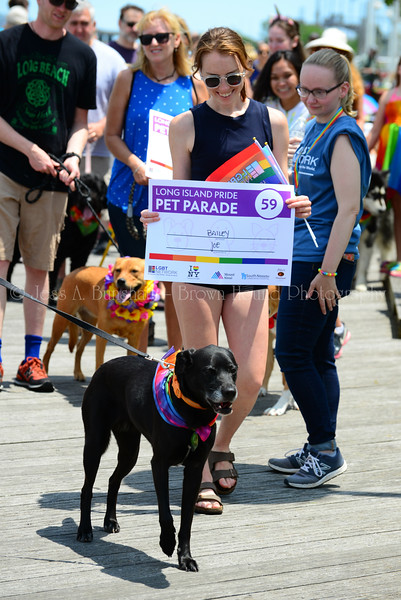 20190622_0112_Pet Pride Parade-a