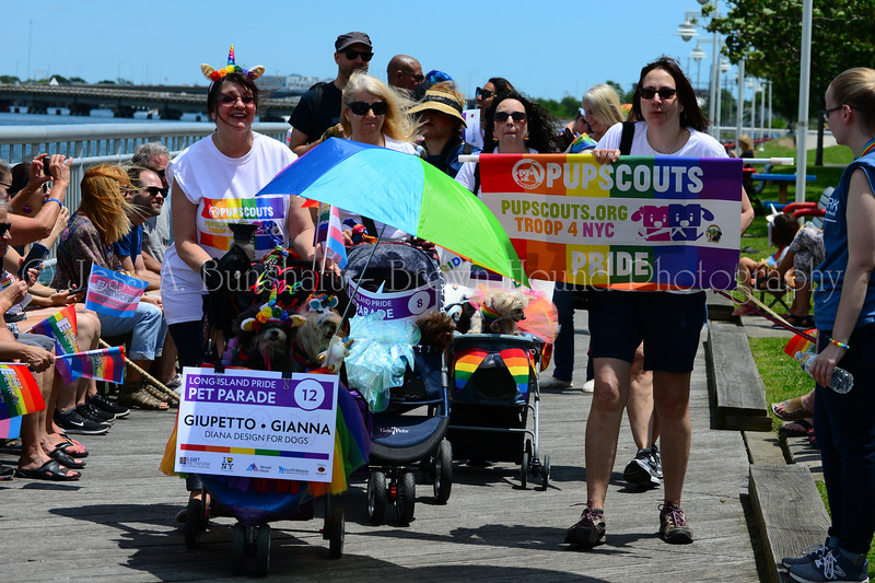 20190622_0136_Pet Pride Parade-a