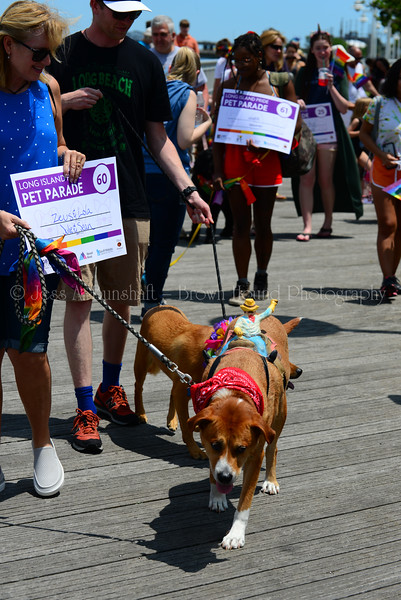 20190622_0114_Pet Pride Parade-a