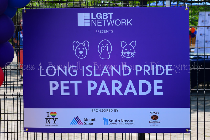 20190622_0002_Pet Pride Parade-a