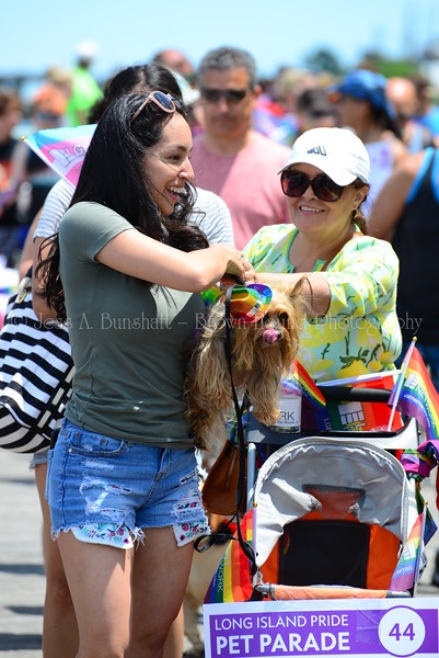 20190622_0087_Pet Pride Parade-a