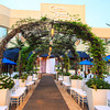 Chateau Briand Palm Tree Garden Runway