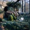 LongWood Gardens0145