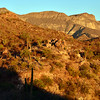 ahhh - first light on the mountain. Our goal is to reach a remote oasis in the Sierra la Giganta - Los Palmares