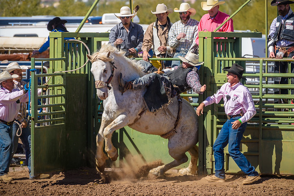 Lost Dutchman Days Rodeo, Apache Junction AZ (27 February 2015)