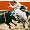 Bullfight 070410 063